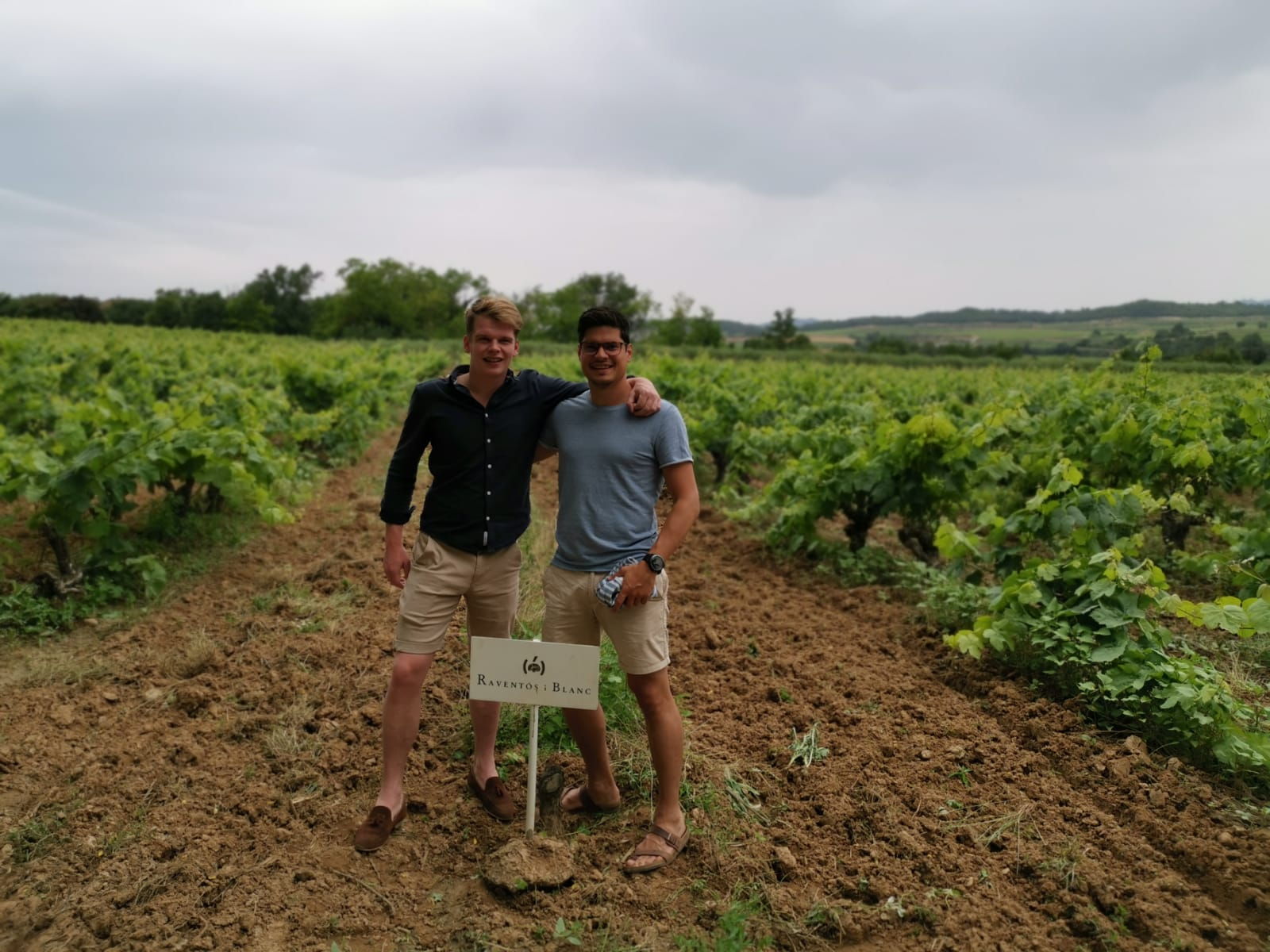 Wijn Proeverij Soest